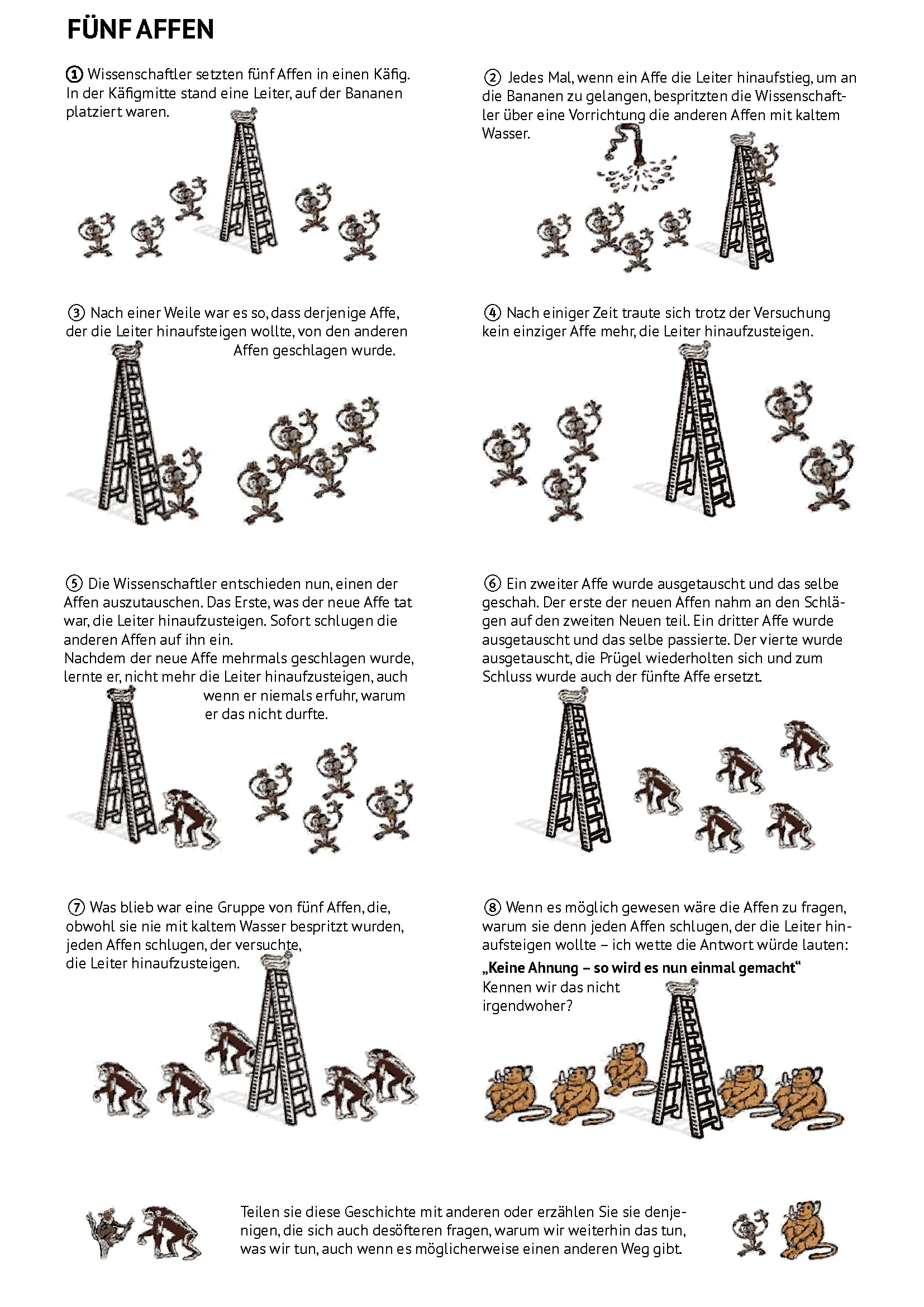 Fünf Affen – Vorschau